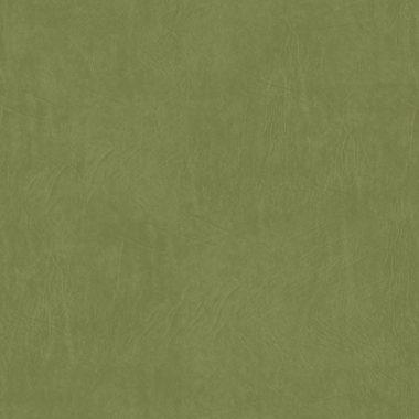 Duna Verde